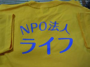 DSCN2380.JPG